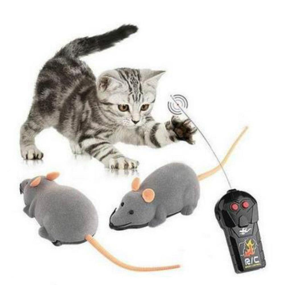 kwitter cat toilet training