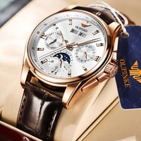 OUPINKE Men Mechanical Watch Luxury Automatic Watch Leather Sapphire Waterproof Sports Moon Phase Wristwatch Montre homme