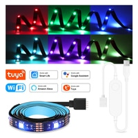 WIFI RGB LED Strip Light 5050 USB RGB Tape Decorative Lamp TV PC Backlight Tuya Smart Control Work With Alexa Google Assistant