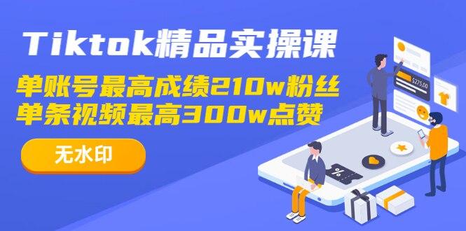 Tiktok精品实操课,单账号最高成绩210w粉丝 单条视频最高300w点赞(无水印)